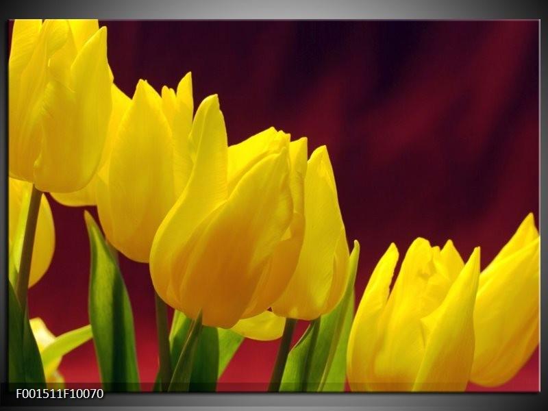 Glas schilderij Tulpen | Geel, Bruin, Groen