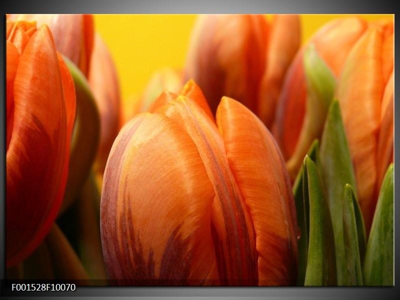 Glas schilderij Tulpen | Groen, Oranje, Geel