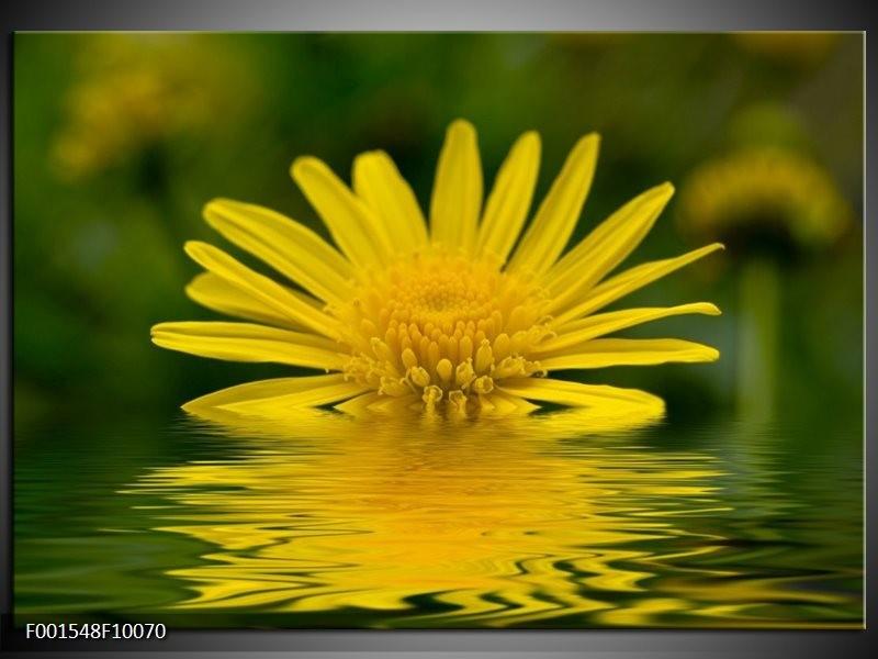 Foto canvas schilderij Bloem | Geel, Groen