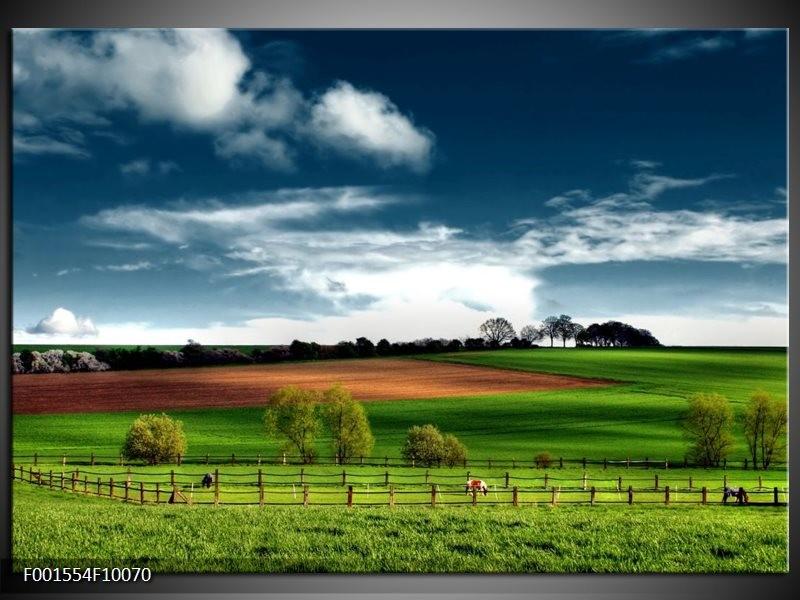 Foto canvas schilderij Natuur | Groen, Bruin, Blauw