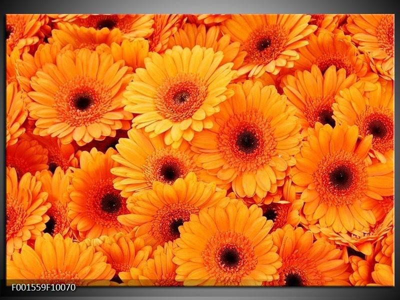 Foto canvas schilderij Bloemen | Oranje, Zwart