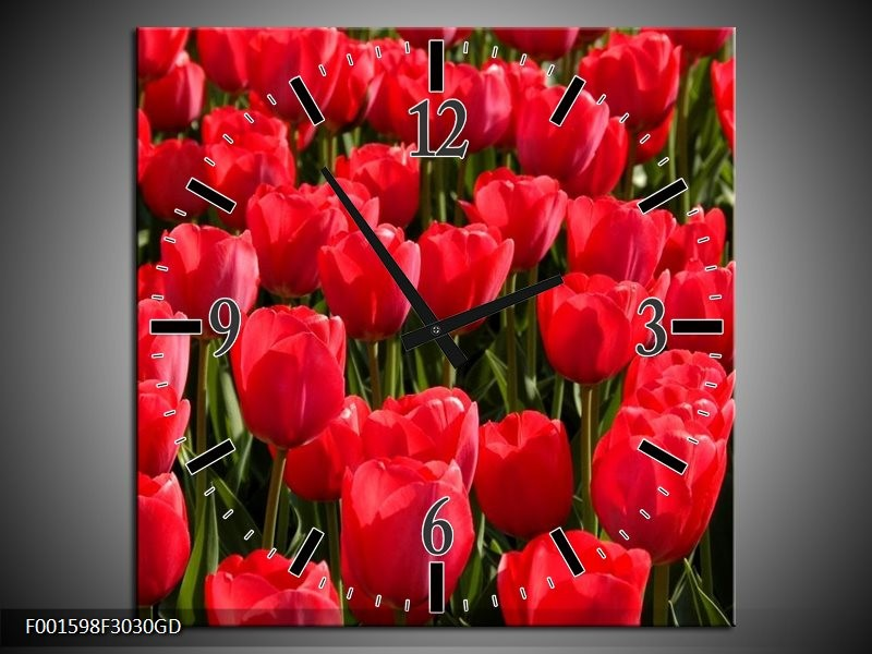 Wandklok op Glas Tulpen | Kleur: Rood, Groen, Grijs | F001598CGD