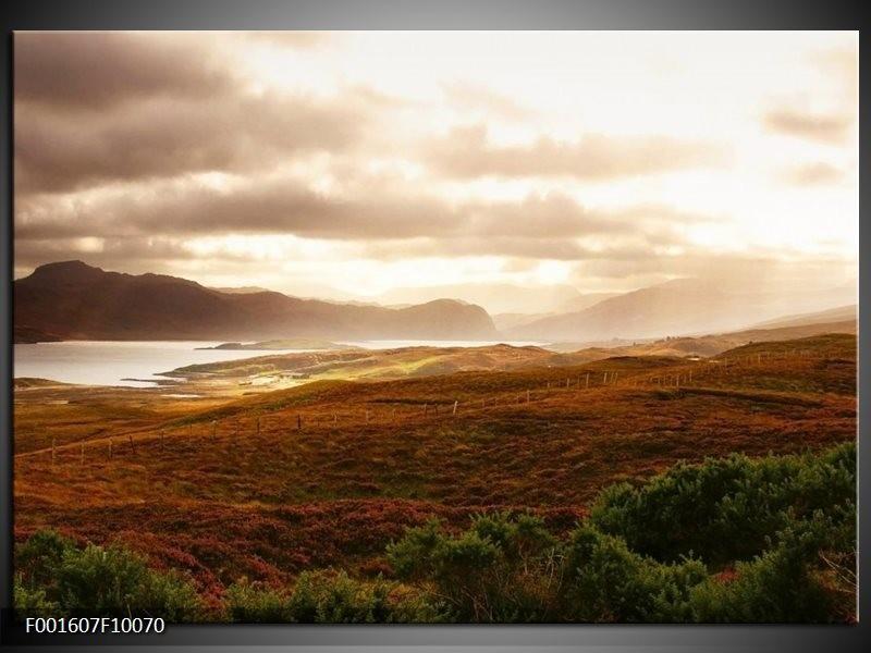 Foto canvas schilderij Natuur | Geel, Wit, Bruin