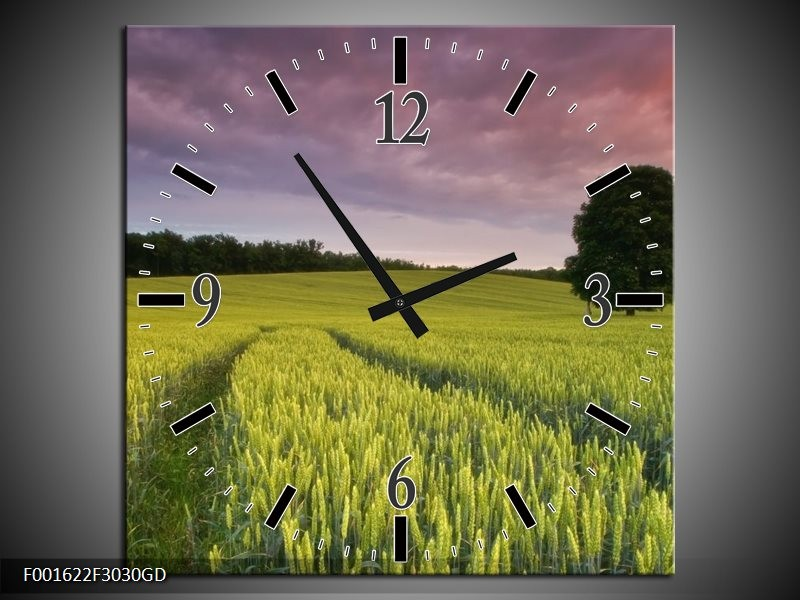 Wandklok op Glas Gras | Kleur: Groen, Paars, Blauw | F001622CGD