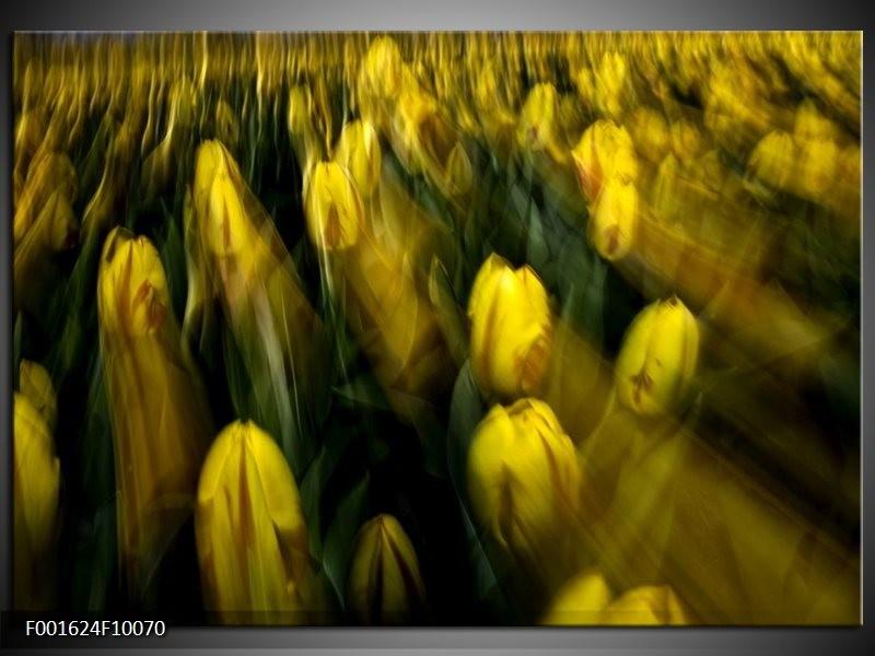 Glas schilderij Tulpen | Geel, Groen