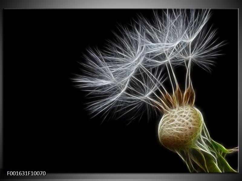 Foto canvas schilderij natuur zwart wit groen for Schilderij natuur