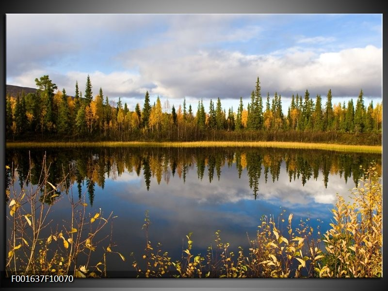 Foto canvas schilderij Natuur | Blauw, Groen, Grijs