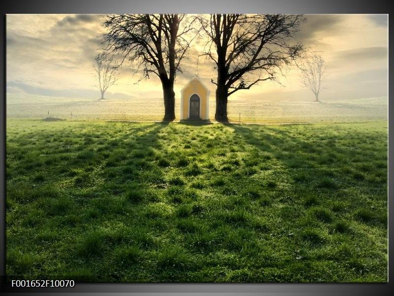 Foto canvas schilderij Natuur | Groen, Wit, Zwart