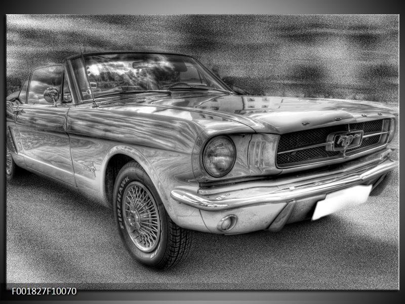 Foto canvas schilderij Mustang | Zwart, Wit, Grijs