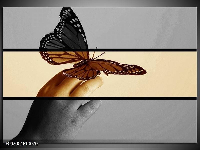 Foto canvas schilderij Vlinder   Sepia, Bruin
