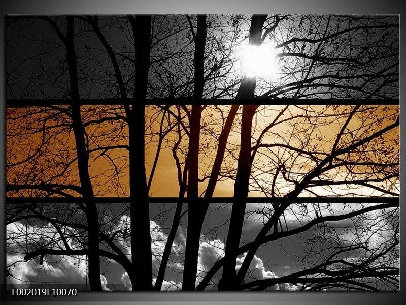 Foto canvas schilderij natuur sepia bruin for Schilderij natuur