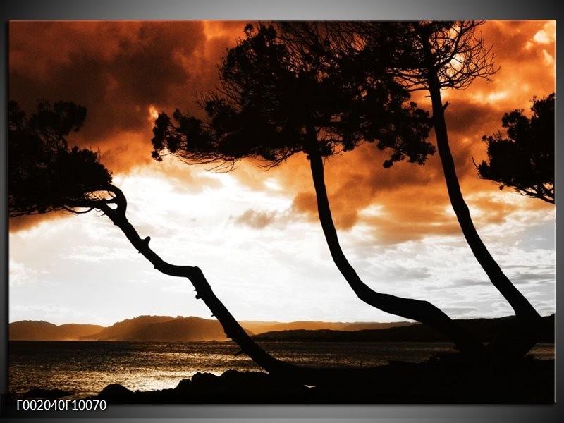 Glas schilderij Natuur | Bruin, Zwart, Wit