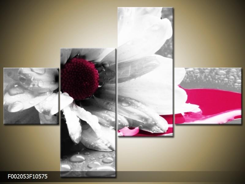 OP VOORRAAD Foto canvas schilderij Bloem | Kleur: Grijs, Wit, Roze | F002053
