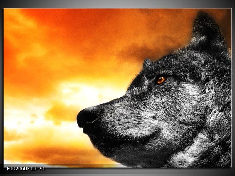 Glas schilderij Wolf | Geel, Grijs, Wit