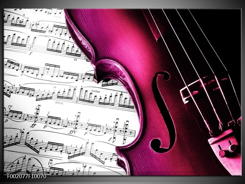 Foto canvas schilderij Instrument   Zwart, Wit, Roze