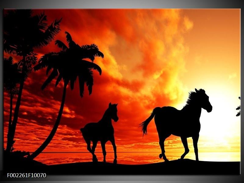 Foto canvas schilderij Natuur   Oranje, Zwart, Bruin