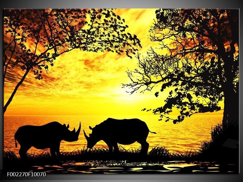 Foto canvas schilderij Natuur | Oranje, Zwart, Bruin