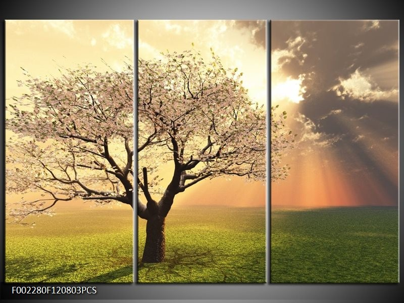 Canvas schilderij Boom | Groen, Geel, Wit | 120x80cm 3Luik