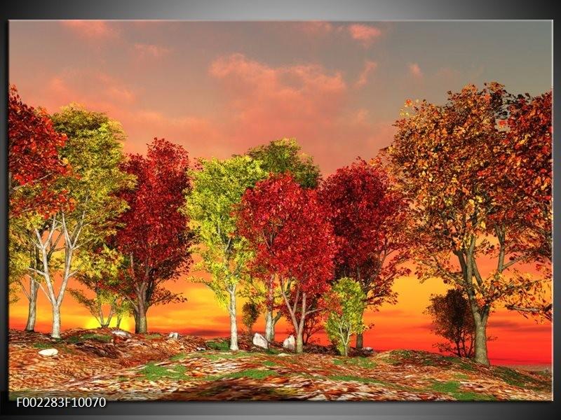 Foto canvas schilderij Herfst | Rood, Bruin, Geel