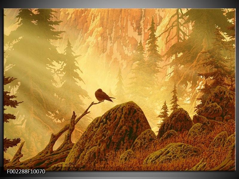 Foto canvas schilderij Natuur | Geel, Bruin, Wit