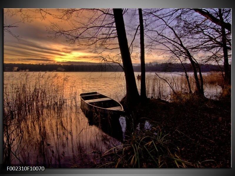 Foto canvas schilderij Natuur | Geel, Zwart, Blauw