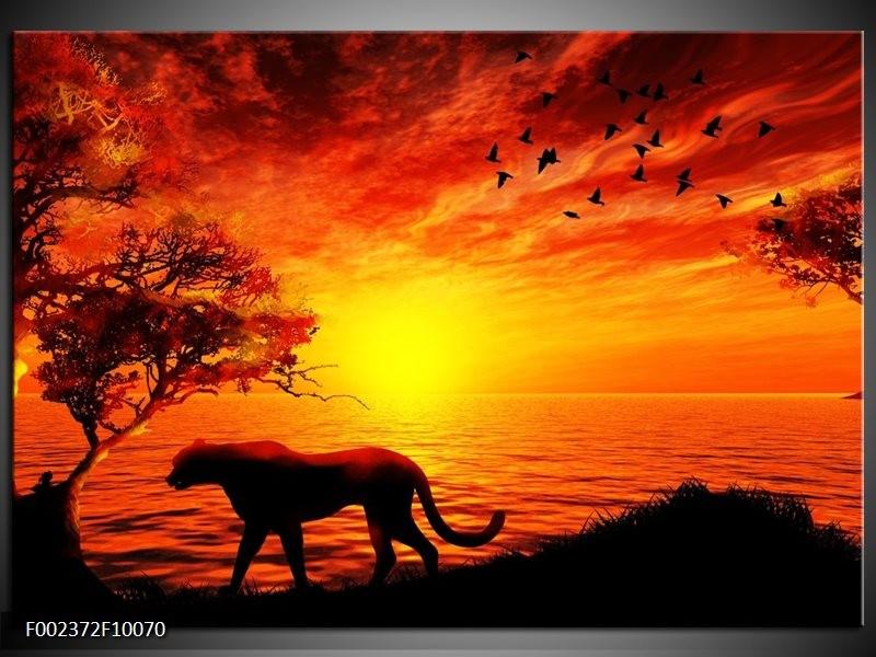 Foto canvas schilderij Natuur   Oranje, Zwart, Rood