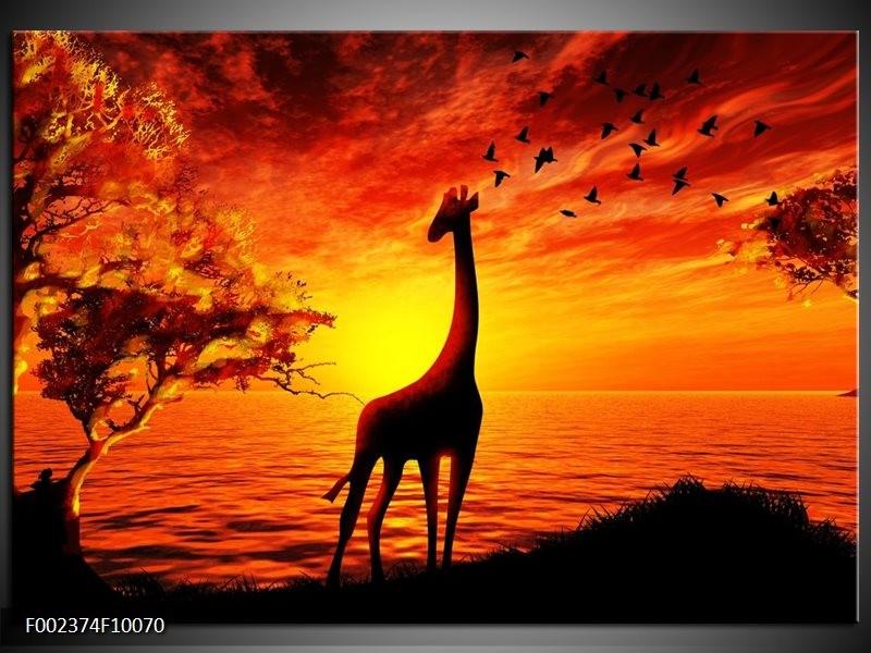 Foto canvas schilderij Dieren   Geel, Oranje, Zwart