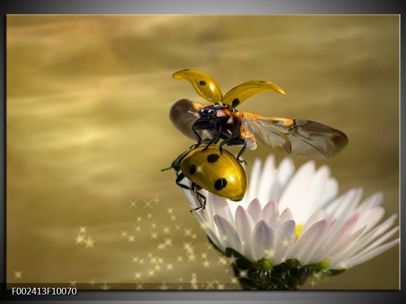 Foto canvas schilderij Natuur | Geel, Goud, Wit
