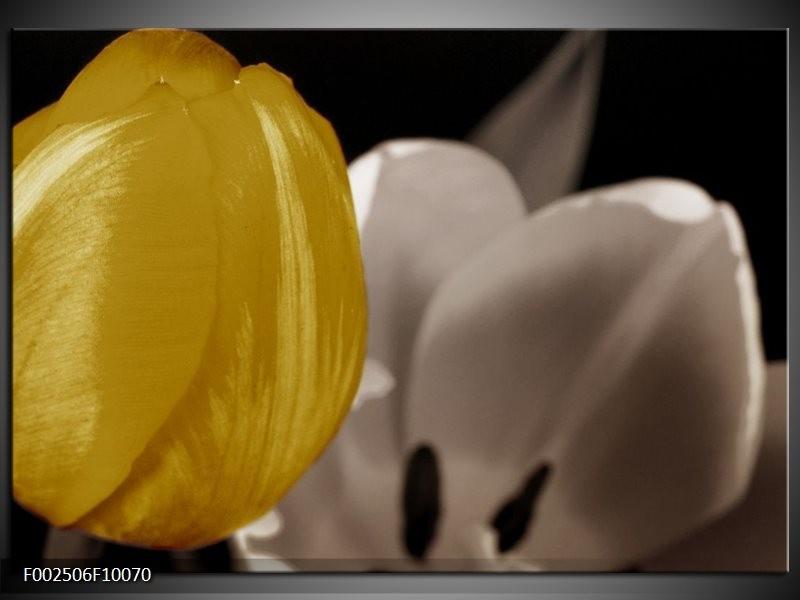 Foto canvas schilderij Tulp | Geel, Grijs, Wit