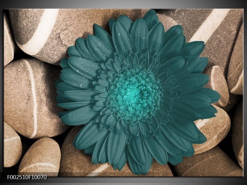 Foto canvas schilderij Bloem | Blauw, Grijs, Wit