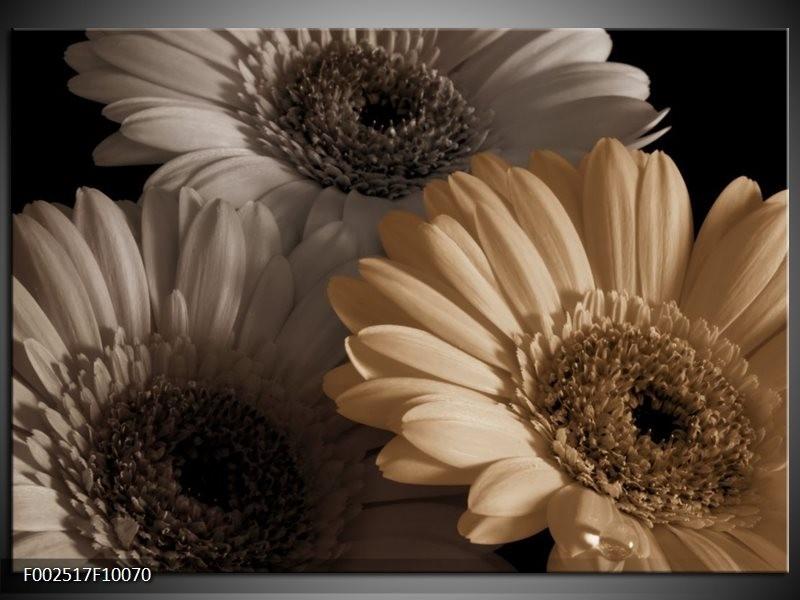 Foto canvas schilderij Bloem | Grijs, Geel