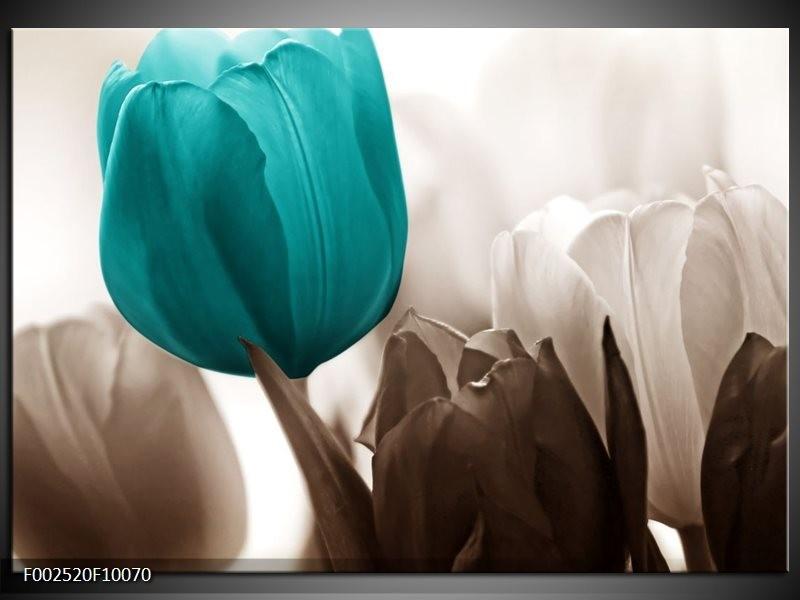 Foto canvas schilderij Tulpen   Blauw, Wit, Grijs