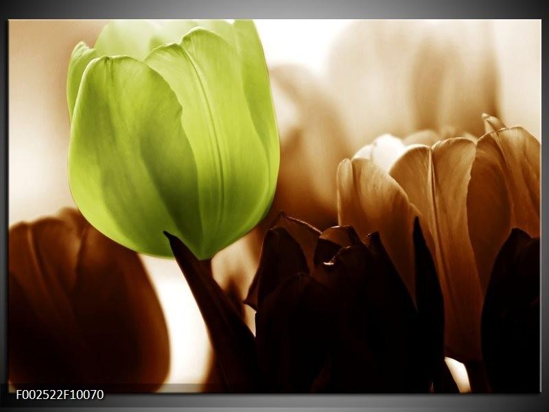 Foto canvas schilderij Tulpen   Groen, Wit, Grijs