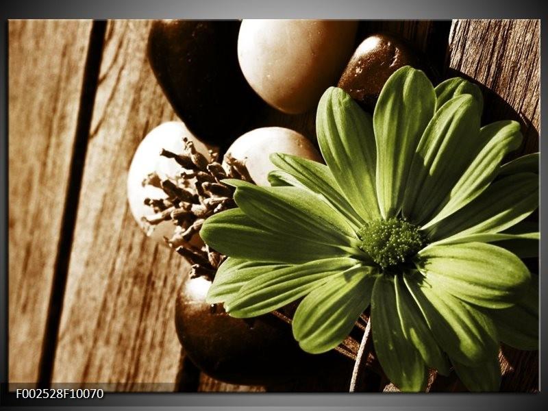 Foto canvas schilderij Bloem | Groen, Wit, Grijs