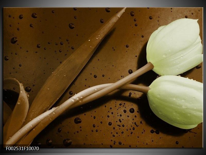 Foto canvas schilderij Tulp   Bruin, Groen