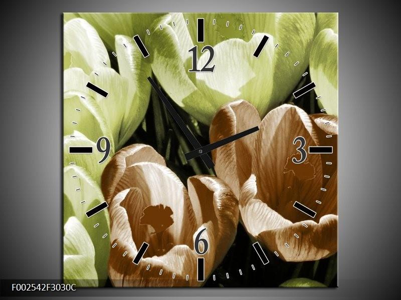 Wandklok op Canvas Krokus | Kleur: Groen, Bruin, Wit | F002542C