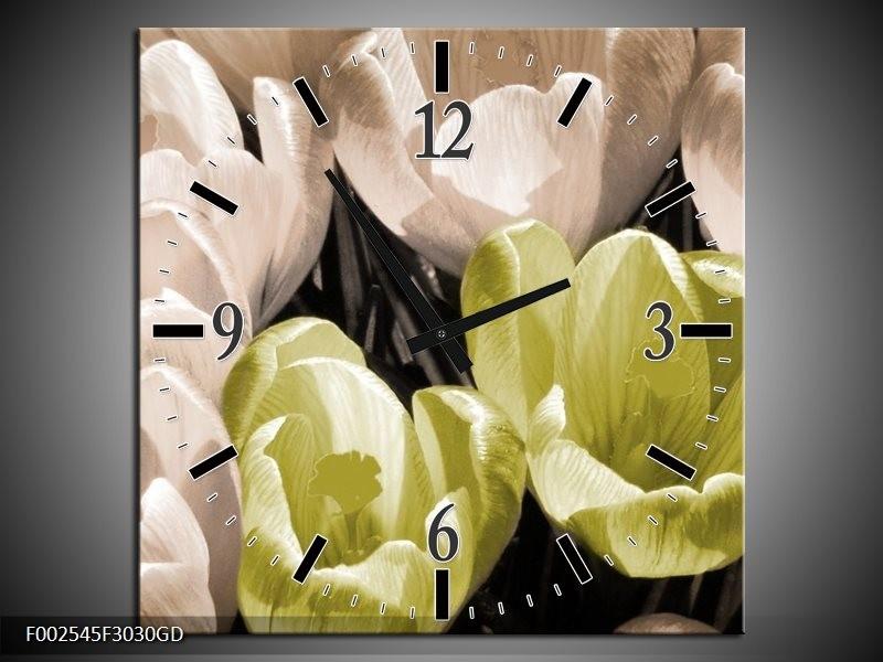 Wandklok op Glas Krokus | Kleur: Groen, Grijs, Wit | F002545CGD