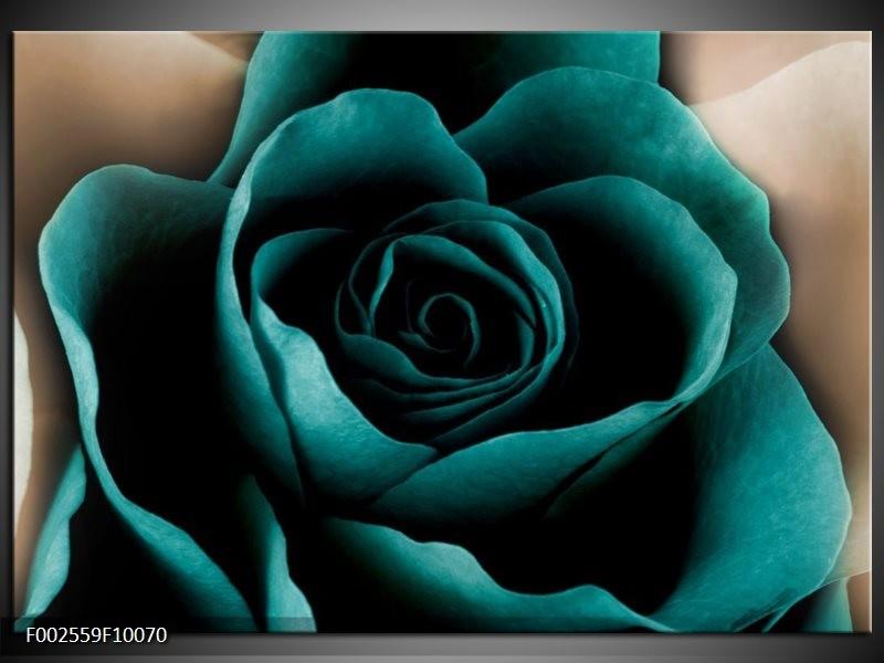 Foto canvas schilderij Roos | Blauw, Wit, Zwart