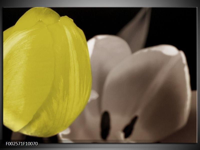 Foto canvas schilderij Tulp | Geel, Grijs, Zwart