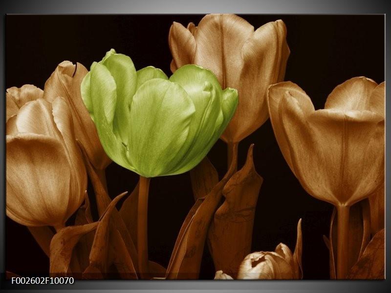 Glas schilderij Tulp   Bruin, Groen, Zwart