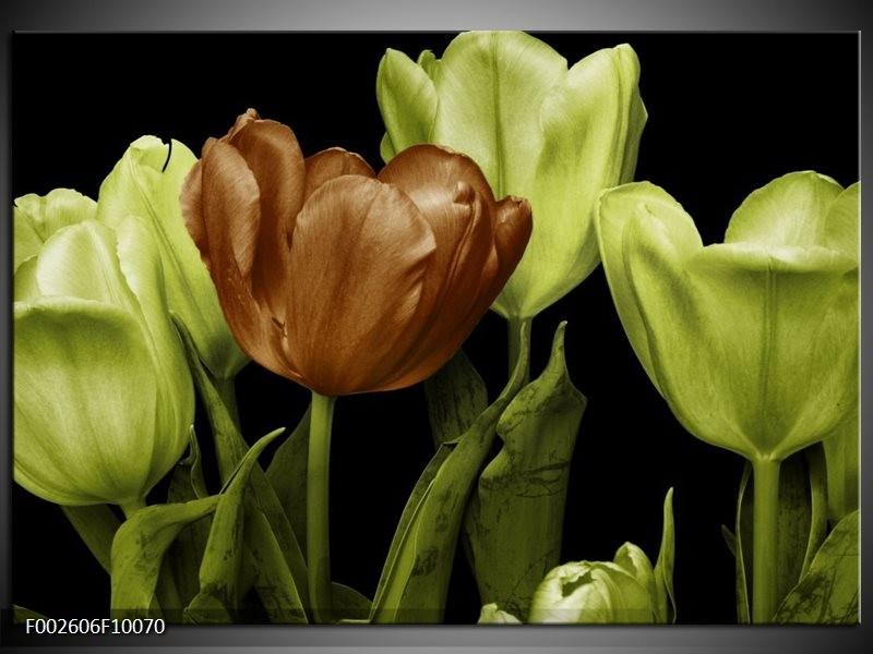 Foto canvas schilderij Tulp   Groen, Bruin, Zwart