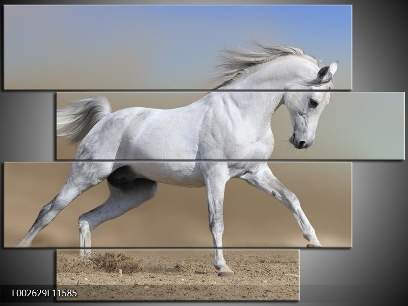 Canvas schilderij Paard | Wit, Grijs | 115x85cm 4Luik