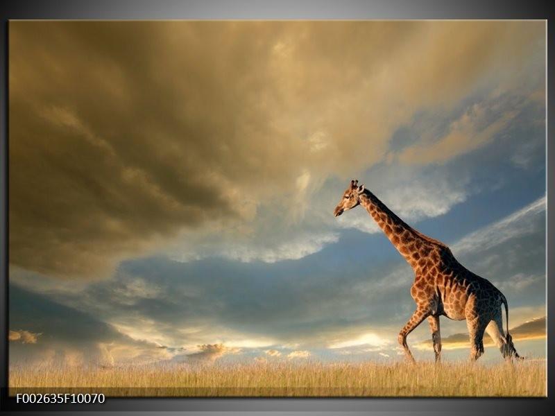 Foto canvas schilderij Giraffe | Bruin, Grijs, Blauw