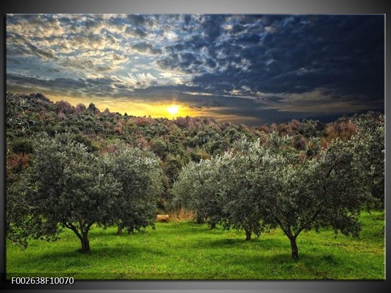 Foto canvas schilderij Natuur   Groen, Geel, Blauw