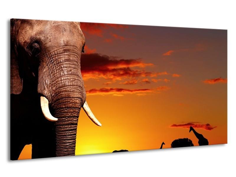 Canvas schilderij Olifant | Bruin, Geel, Oranje | 190x100cm 1Luik