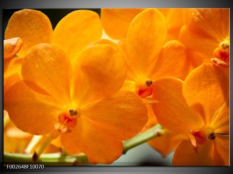 Foto canvas schilderij Orchidee | Oranje, Geel