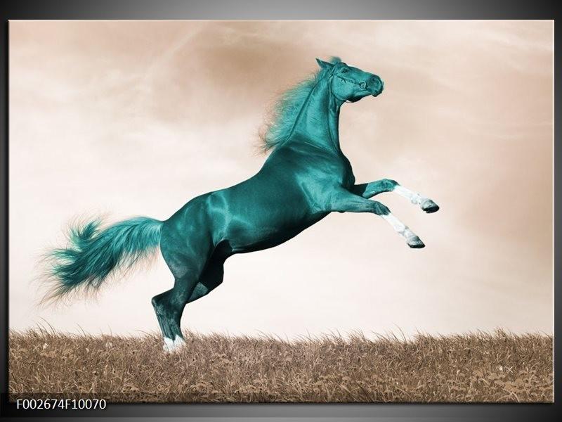 Foto canvas schilderij Paard | Groen, Sepia