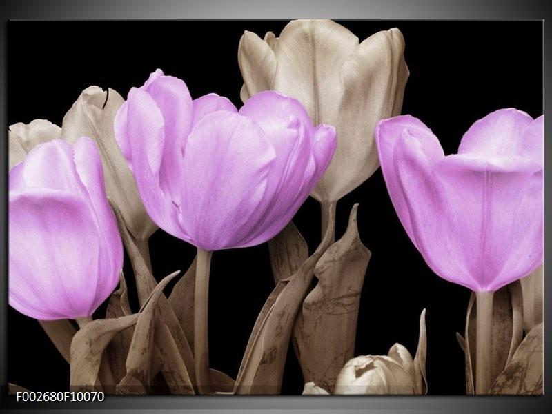 Foto canvas schilderij Tulp | Paars, Zwart, Grijs