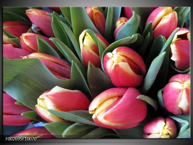 Foto canvas schilderij Tulp | Roze, Groen, Geel