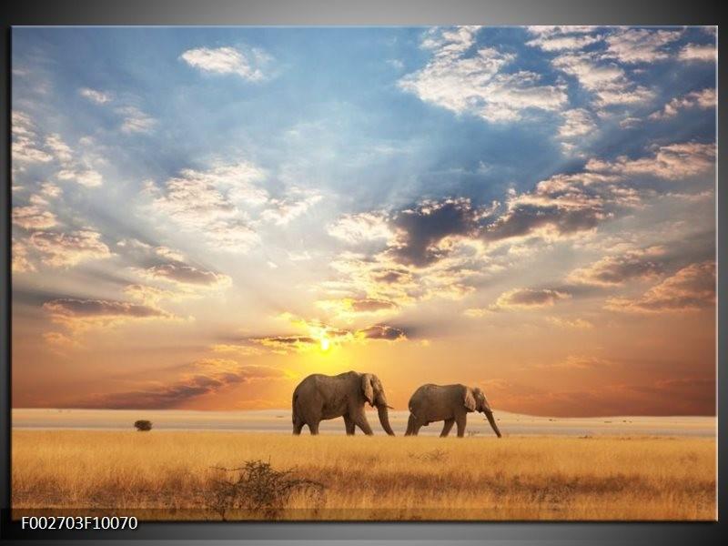 Foto canvas schilderij Olifant | Grijs, Geel, Blauw